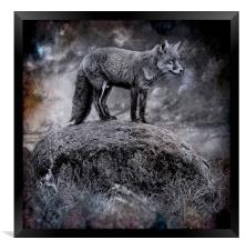 In the light of the silvery moon, Framed Print
