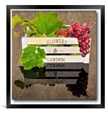 fruity reflections, Framed Print