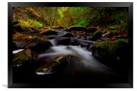 Reelig glen, Framed Print