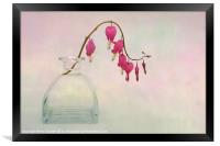Dicentra in a Glass Vase 2, Framed Print