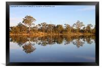 River Murray Reflections, Framed Print