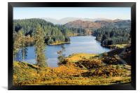 Tarn Hows The Lakes District, Framed Print