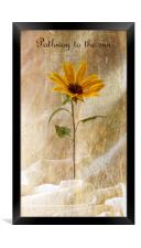 Pathway to the sun, Framed Print