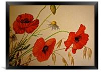 Common Red Poppy with Hare bell and Mayweed, Framed Print