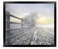 Winters nip, Framed Print
