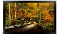 Autumn Glory in Padley Gorge, Framed Print