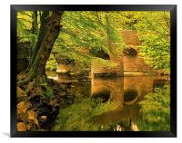 River Plym at Plymbridge, Framed Print