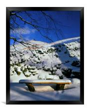 Ringing Roger and Bench in the Snow, Framed Print