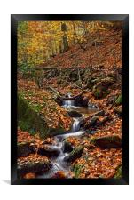 Porter Clough in Autumn                           , Framed Print