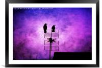 Two Crow Violet, Framed Mounted Print