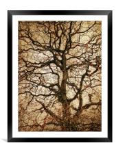 Autumn Love Tree, Framed Mounted Print