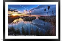 Reeds & Reflections, Framed Mounted Print