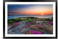 Headon Warren Sunset, Framed Mounted Print