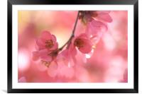 Sensual Touch, Framed Mounted Print