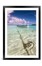 Moored Dhoni. Maldives, Framed Mounted Print