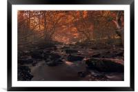 Into the Woods we go, Framed Mounted Print