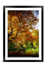 Take a Seat, Framed Mounted Print