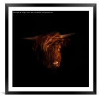 Highland Portrait, Framed Mounted Print