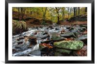 Autumnal colours in Roddlesworth - Tockholes woods, Framed Mounted Print