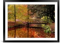 Autumn Reflections in the Stream, Framed Mounted Print