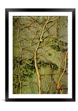Tree Art, Framed Mounted Print