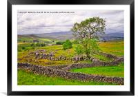 Yorkshire Dales countryside in Malhamdale, Framed Mounted Print