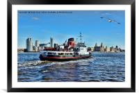 Royal Daffodil departing Seacombe for Liverpool, Framed Mounted Print