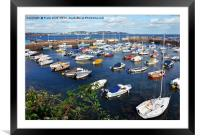The serene, sunblessed Paignton Harbour, Framed Mounted Print