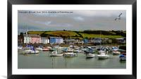 Aberaeron Harbour (Marina section), Framed Mounted Print