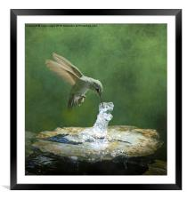 Cool Refreshment, Framed Mounted Print