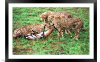 JST2908 Mum shows them how, Framed Mounted Print