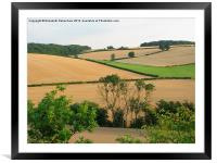 Chiltern View from A41 Bypass, Framed Mounted Print
