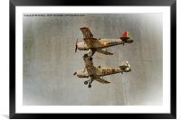 Old Buckers, Framed Mounted Print