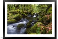 Burrator - Dartmoor, Framed Mounted Print