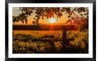 Silhouetted In Red., Framed Mounted Print