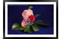 Pink Green White on blue, Framed Mounted Print