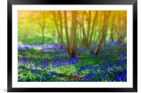 Dreaming of spring, Framed Mounted Print