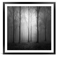 Woodland In The Fog, Framed Mounted Print