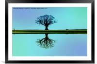 Solitary tree in blue symmetry, Framed Mounted Print