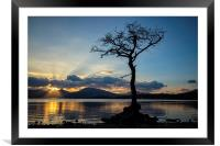 Lomond Gold, Framed Mounted Print