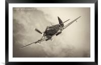 One of the Few, Framed Mounted Print