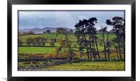 """""""BUCOLIC SCENE IN THE LAKE DISTRICT"""", Framed Mounted Print"""