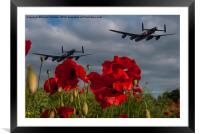 Lancaster Bombers over Poppy Field, Framed Mounted Print