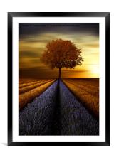 The  tree , Framed Mounted Print