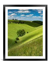 Wild Flowers And Dappled Light On Horsedale, Framed Mounted Print
