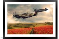 Spitfire over poppiefield, Framed Mounted Print