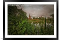 View from the undergrowth, Framed Mounted Print