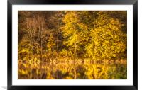 River Reflections............., Framed Mounted Print