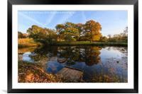 Tranquility , Framed Mounted Print