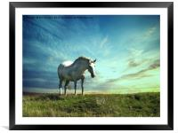 White horse on the hill, Framed Mounted Print